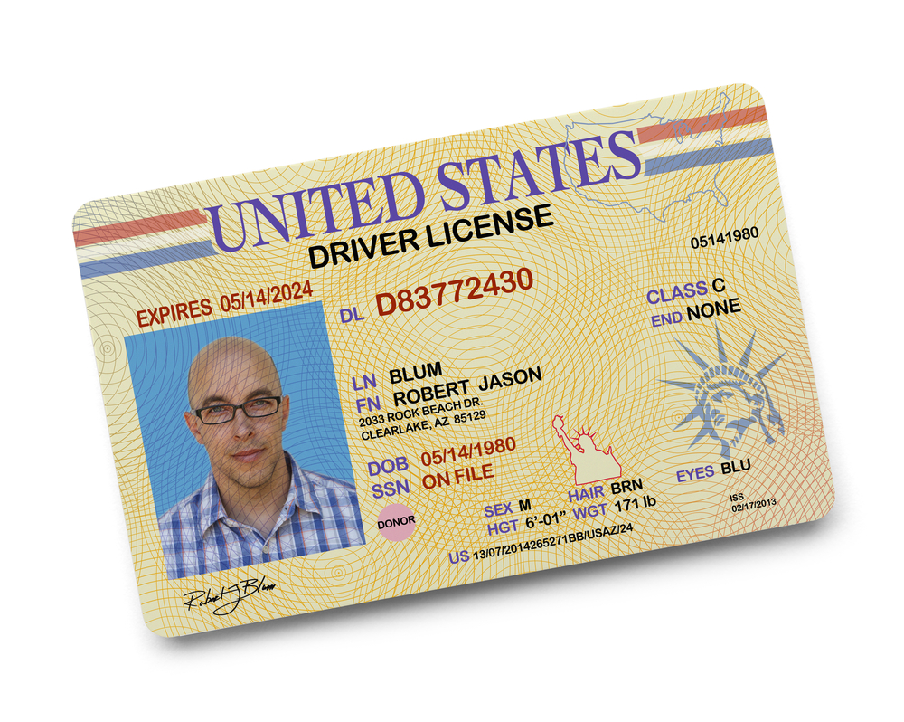 drivers license background check free